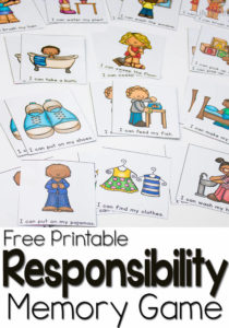 responsibility-pin2