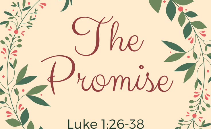 Grade School Advent Series: The Promise